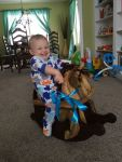 One year old riding toddler rocking horse natural poplar and walnut
