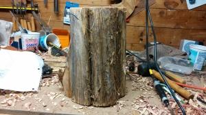cedar stump