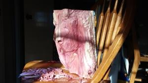beginning cedar horse head carving