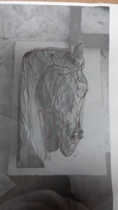 photo copy of cedar horse head to create new outline for carving